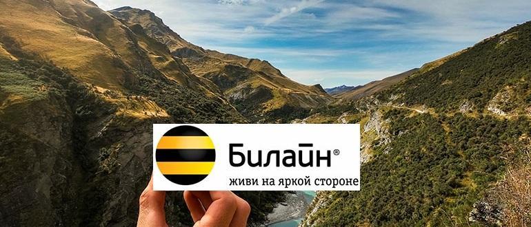 Билайн в Абхазии