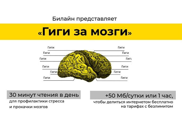 Гиги за мозги